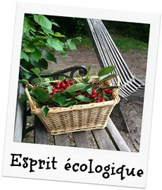 Crèche Chatou, Crèche associative Chatou, Crèche associative, Le Jardin des Petits soleils, Un esprit écologique