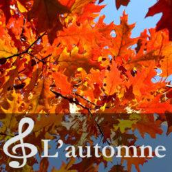 Crèche-Chatou-Crèche-associative-Chatou-Crèche-associative-Le-Jardin-des-Petits-soleils-Chansons-Automne