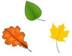 Crèche Chatou, Crèche associative Chatou, Crèche associative, Le Jardin des Petits soleils, Chansons, Les feuilles s'envolent